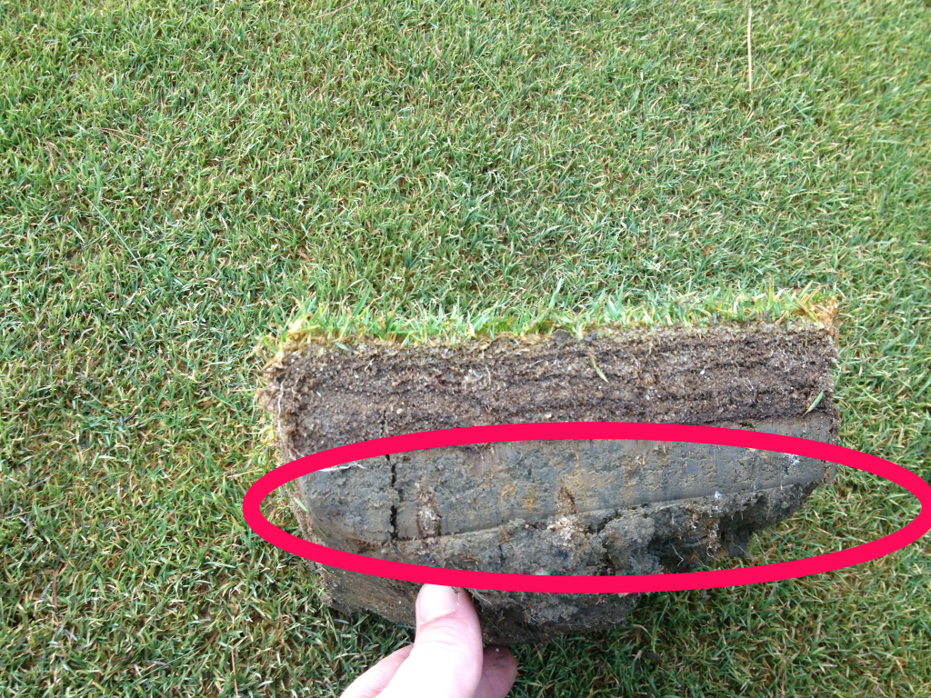 This picture shows the clay (highlighted by the red circle) that causes the drainage issues on 18 South fairway.